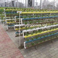 A type hydroponic system