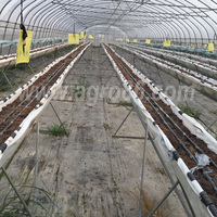 Drip belt irrigation